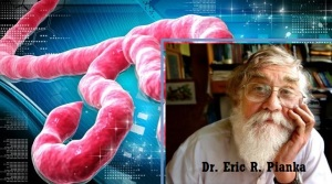 doctor-piaka-ebola-virus