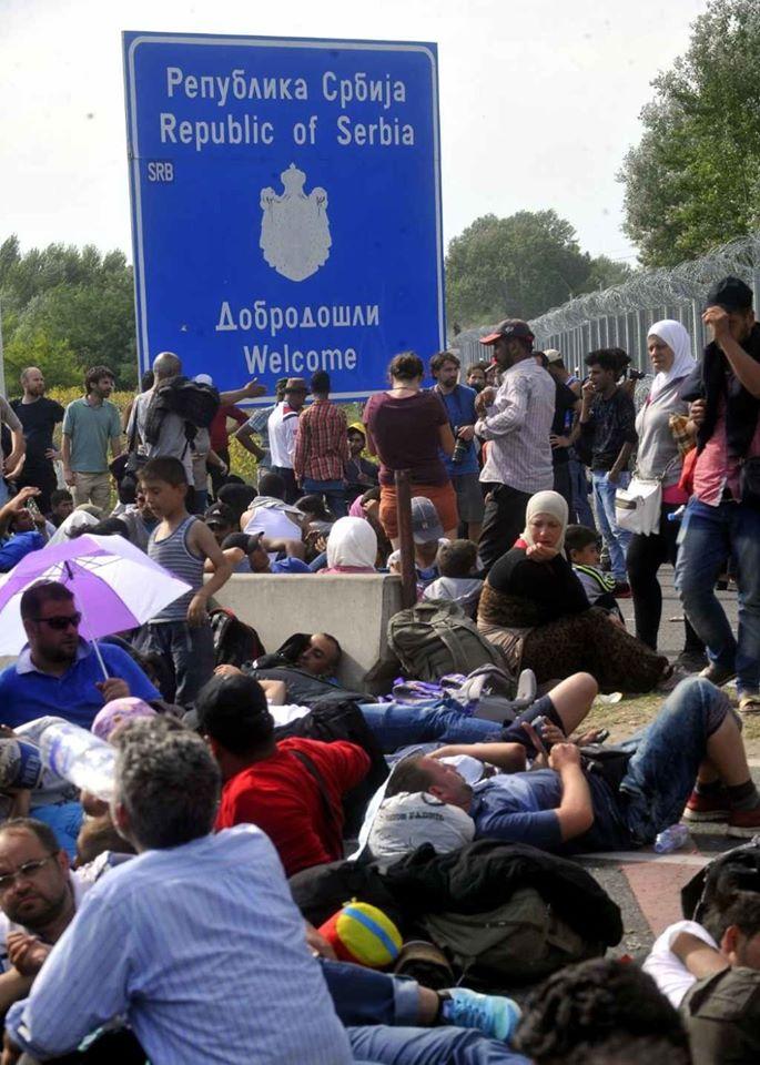 мигранти.jpg